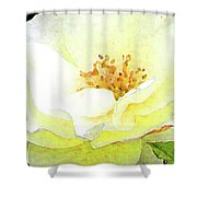 For You My Love Shower Curtain