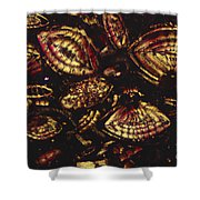Foraminiferous Limestone Lm Shower Curtain