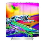 Ford Greyhound Shower Curtain
