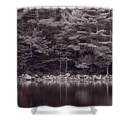 Forest At Jordan Pond Acadia Bw Shower Curtain
