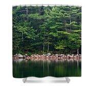 Forest At Jordan Pond Acadia Shower Curtain