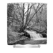 Forest Creek Waterfall In Black And White Shower Curtain