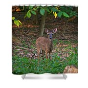 Forest Edge 7365 1754 Shower Curtain