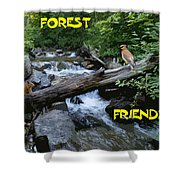 Forest Friends Sharing A Log Over A Creek On Mt Spokane Shower Curtain