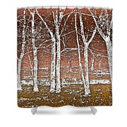 Forest Ghosts Shower Curtain
