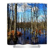 Forest In Colorful Fall Shower Curtain