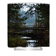 Forest Lake Shower Curtain