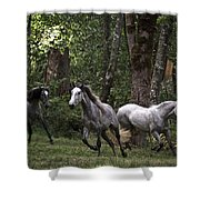 Forest Mares Shower Curtain
