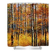 Forest Of Gold Shower Curtain