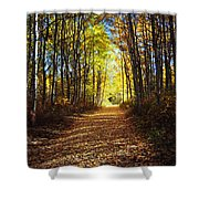 Forest Path In Autumn Shower Curtain
