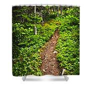 Forest Path In Newfoundland Shower Curtain by Elena Elisseeva