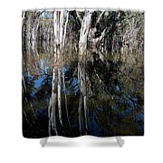 Forest Spin Shower Curtain