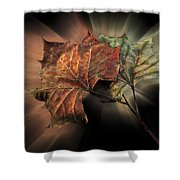 Forever Autumn Shower Curtain