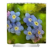 Forget-me-not Flower Shower Curtain