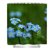 Forget-me-nots In Treman State Park, Ny Shower Curtain