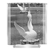 Forsyth Fountain - Black And White 3 Shower Curtain