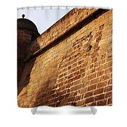 Fort Shower Curtain
