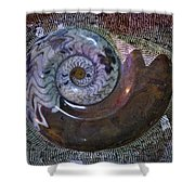 Fossil Shower Curtain