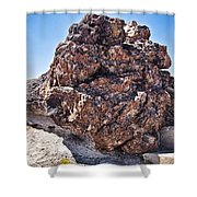 Fossil Tree Shower Curtain