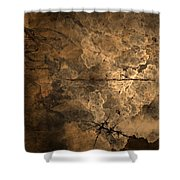 Fossilite Shower Curtain