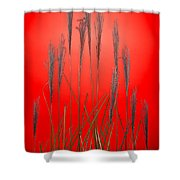 Fountain Grass In Red Shower Curtain