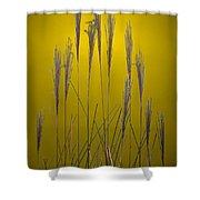 Fountain Grass In Yellow Shower Curtain