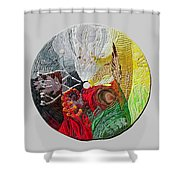 Four Directions  2 Shower Curtain by Arla Patch