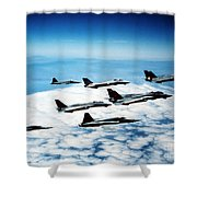 Four F-14 Tomcats And Three F-5 Tiger Shower Curtain