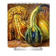 Four Gourds Shower Curtain