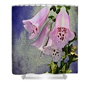 Fox Glove Blue Grunge Shower Curtain by Bill Cannon