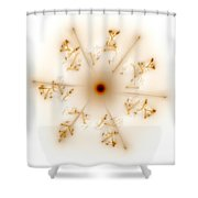 Fractal Brown Star Shower Curtain
