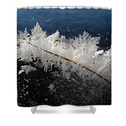 Fractal Frosty Ice Crystals Shower Curtain
