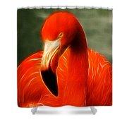 Fractalius Flamingo Shower Curtain