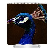 Fractalius Peacock Shower Curtain