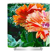 Fractured Gerber Daisies Shower Curtain