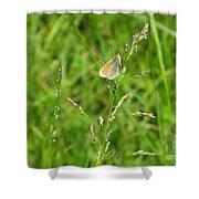 Fragile Beauty #01 Shower Curtain