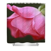 Fragrant Seduction Shower Curtain