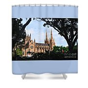 Framed Cathedral Shower Curtain