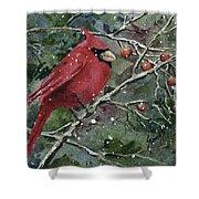 Franci's Cardinal Shower Curtain