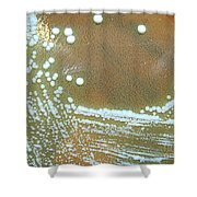 Francisella Tularensis Culture Shower Curtain