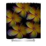 Frangipani Circle Of Color Shower Curtain