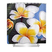 Frangipani I Shower Curtain