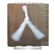 Frazzle Theory Shower Curtain