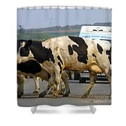 Free Home Delivery Shower Curtain
