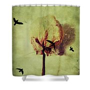 Freedom Of Feelings  Shower Curtain