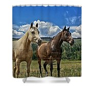 Freedom Riders Shower Curtain