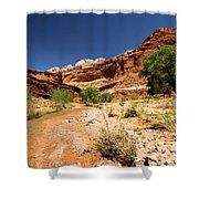 Fremont River Shower Curtain
