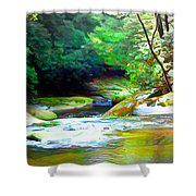 French Broad River Filtered Shower Curtain