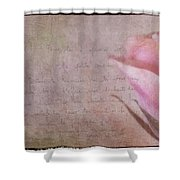 French Tours Shower Curtain