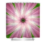 Fresh Pink Shower Curtain